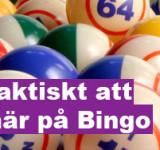 Hur man blir rik på Bingo