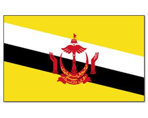 flag_bahrain