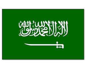 är halal dating tillåtet i islam Desi dating Australien
