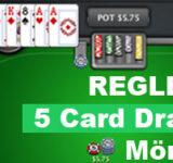 GUIDE – Lär dig Spela Five Card Draw (Mörkpoker)